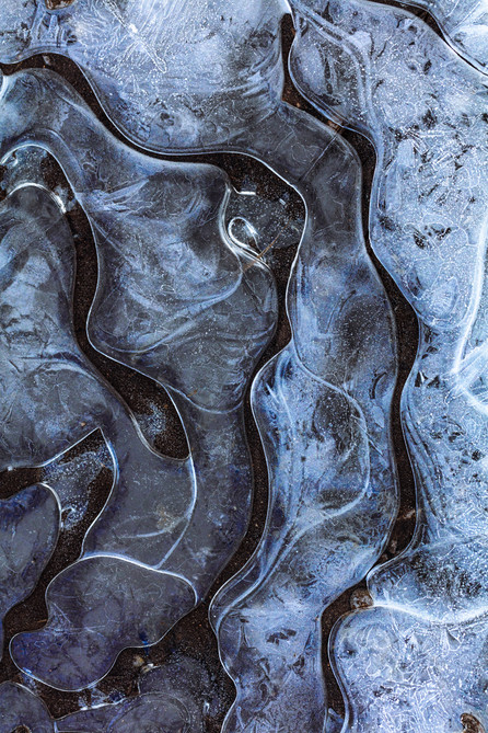 Ice puddle - form and flow