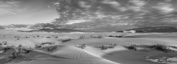 Mesquite dunes, Death Valley, dawn pano.