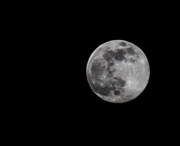 lockdown full moon