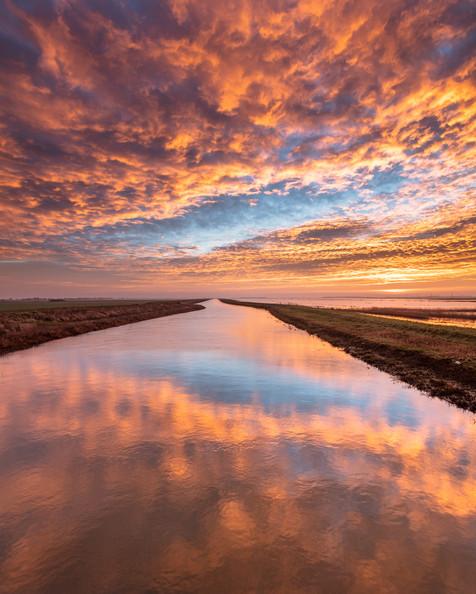 Sahara dawn over the Nene Washes