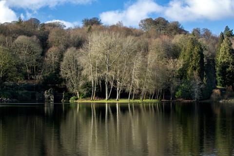 tree island, stourhead.jpg