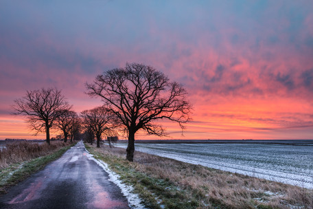 a winters dawn -  black ice and a dusting of snow