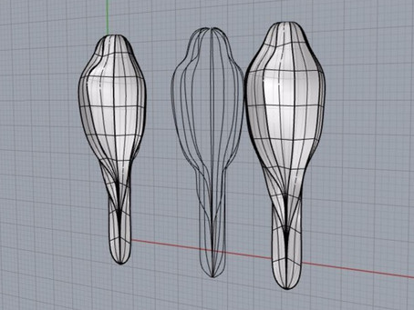 """Digital Fabrication: """"Unwrapping a 3D Form"""""""