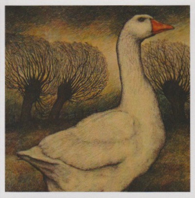 Goose and Willows