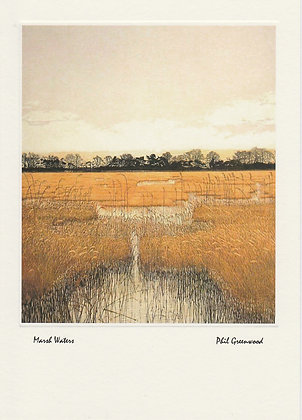 Marsh Waters