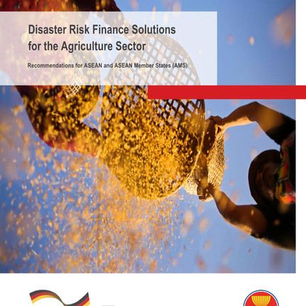 Disaster Risk Finance Solutions for the Agriculture Sector