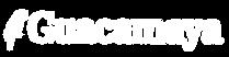 Logo modelo GG-02.png