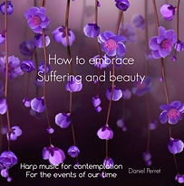 CD Cover ' How to embrace Suffering and Beaty'