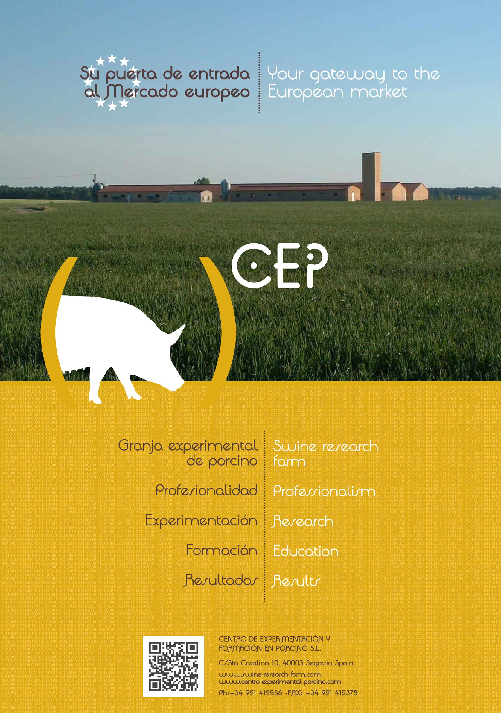 CEP Genérico