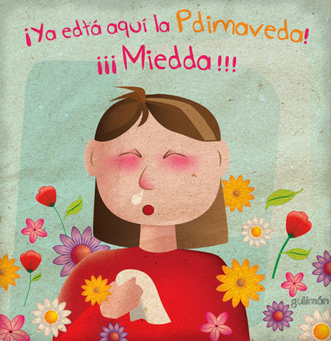 Miedda de Pdimaveda