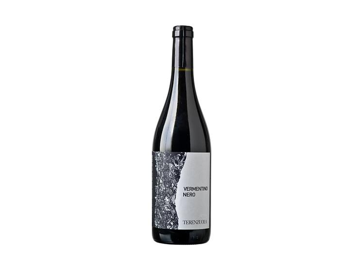 VIGNE BASSE VERMENTINO NERO 2018 -  0.75L - 1 bottle - TERENZUOLA
