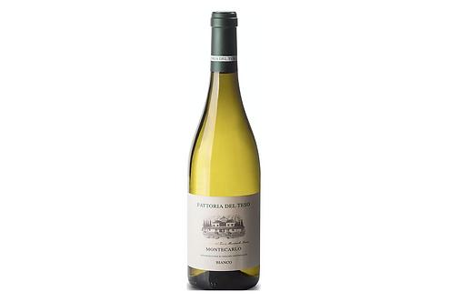 MONTECARLO BIANCO 2018 0.75L - 1 bottle - Fattoria del Teso