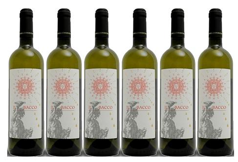 IL BACCO VERDICCHIO 2017 0.75L - 6 bottles - Coroncino -11.8€/bottle
