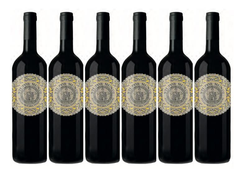 STUPUR MUNDI RISERVA 2017 0.75L - 6 bottles - Carbone - 28,67€/bottle