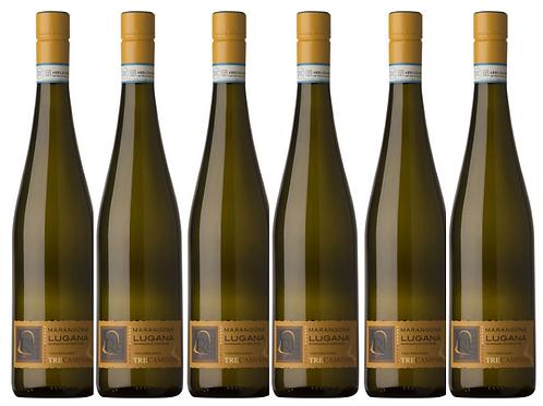 TRE CAMPANE LUGANA -  2017 0.75L - 6 bottles - Marangona - 14.8€/bottle