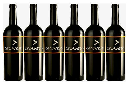 CESANESE  2014 0.75L - 6 bottle - L'olivella -15.8€/bottle