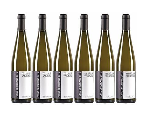 FOSSO DI CORSANO -  0.75L - 6 bottles - TERENZUOLA - 17,7€