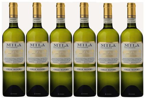 MILA - Chardonnay, Viognier 2015 0.75L - 6 bottles - Colle Manora - 19,7€/bottle