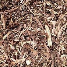 shredded bark.jpg