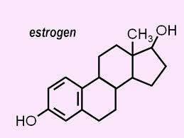 """Medscape Article by Kristin Jenkins """"Vaginal Estrogens Appear Safe in Menopause"""""""
