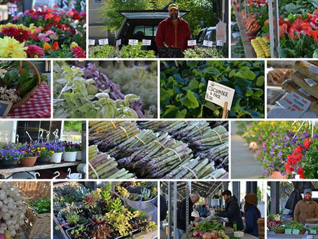 Farmers Market: Fresh and Local
