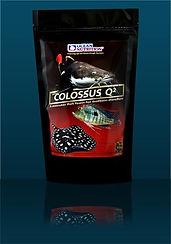 colossus q