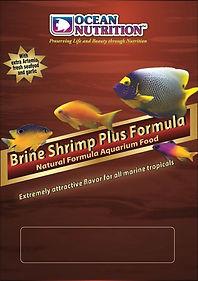 brine shrimp plus