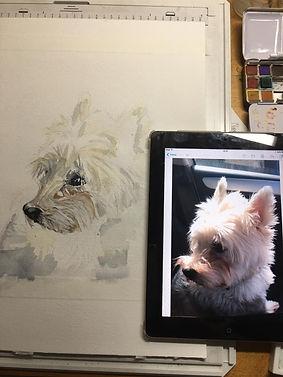 Portrait in Progress