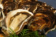 なかがみ養殖場の岩牡蠣