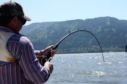 Right Shoulder Fishing.jpg