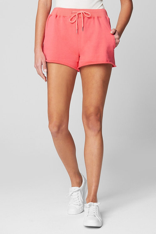 Blank NYC Take Me There Shorts