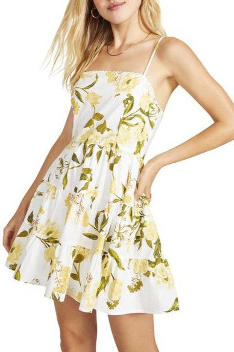 BB Dakota Lush Life Dress