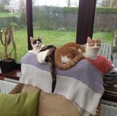 Tilly and Mr Kipling