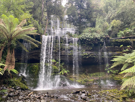 Russell Falls the perfect day trip from Hobart City