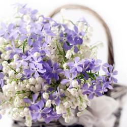 Art_floral (8)