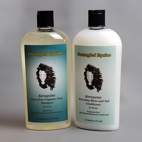 EveryDay Shampoo and Conditioner Combo