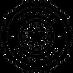 Transparent_Logo White_edited.png