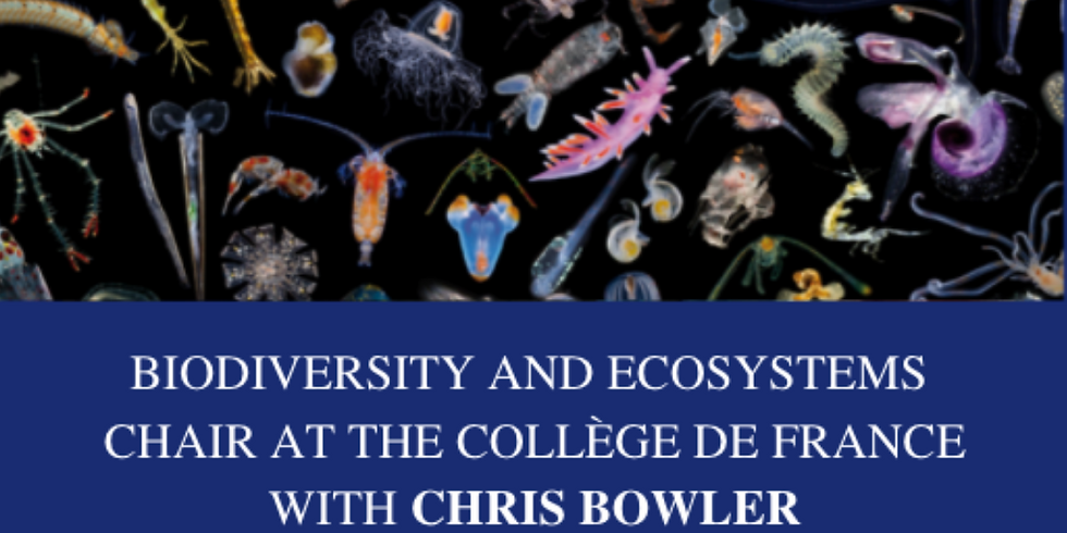 College de France Lesson 3: History of research on biodiversity and ecosystems