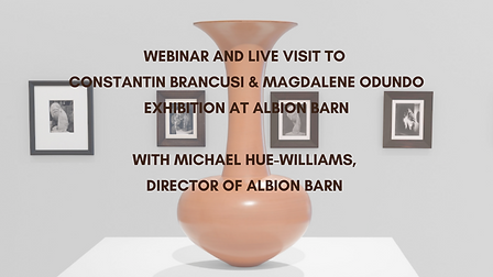 WEBINAR AND LIVE VISIT TO constantin bra