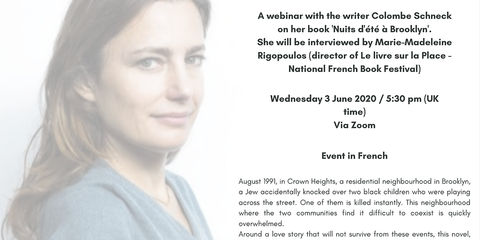 Webinar with the writer Colombe Schneck on her book 'Nuits d'été à Brooklyn'
