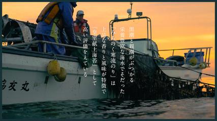七ヶ浜産高級海苔で作ったオイルソース「浜ののりだれ」CM