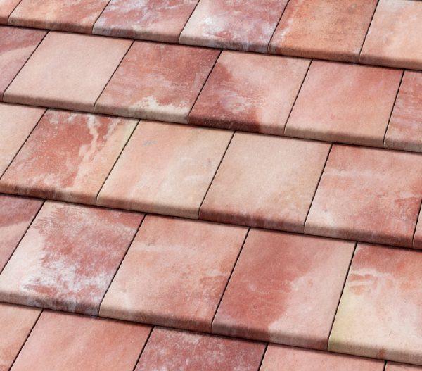 ibiza-pink-600x527.jpg