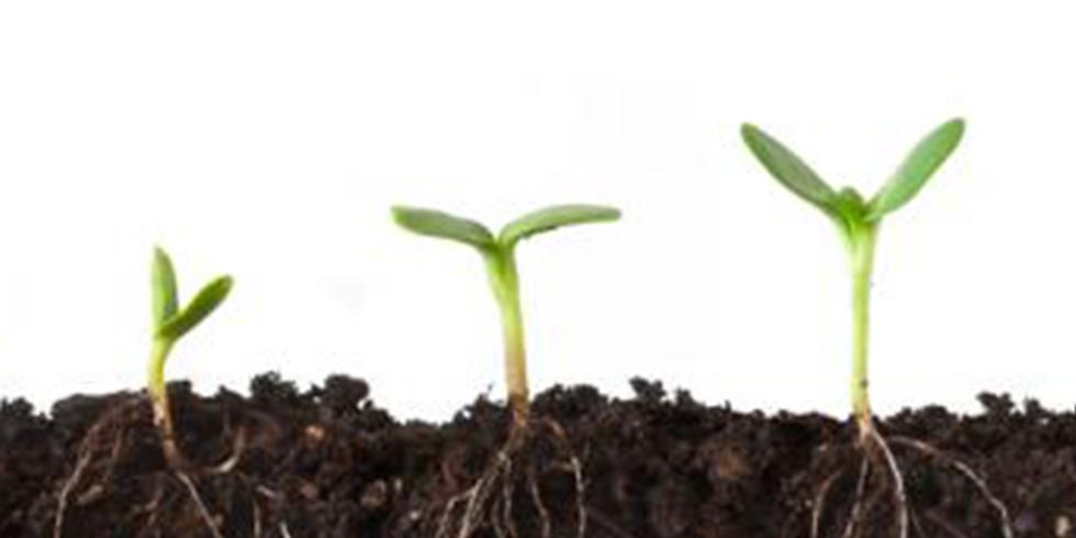 Seed Starting / Sharing Circle