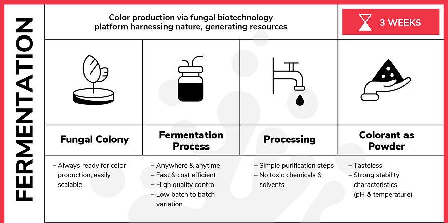 fermentation_edited.jpg