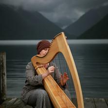 Harp close 2.jpg