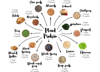 Essential Amino Acids, Complete Proteins, Incomplete Proteins—The Basics to Remember!
