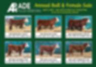 PostCard_Sales page.JPG