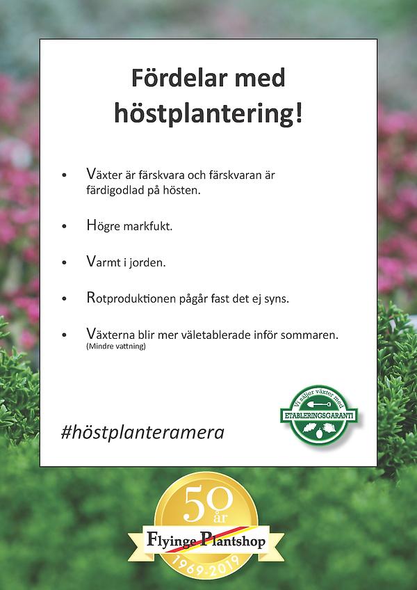 Höstplanteringflygblad2020_Sida_2.png