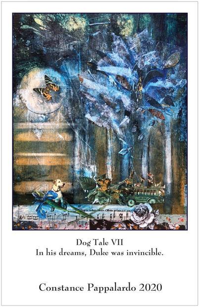 Dog tale #7