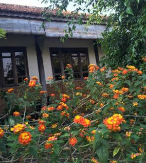 Nhà rường - nhà vườn Huế tại thành phố Thủ Dầu Một, Bình Dương